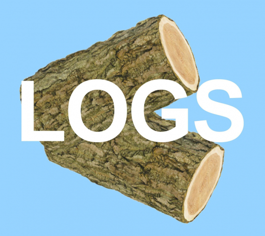 Julia Masli & The Duncan Brothers: LOGS (Work in progress)