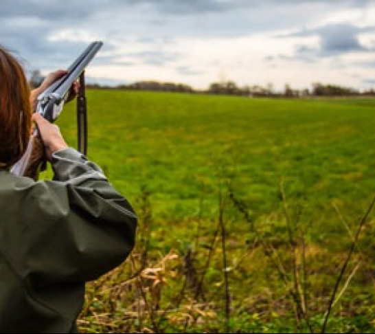 Clay Pigeon Shooting Kent