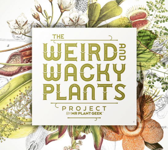 Centenary Virtual Event | Weird and Wacky Plants by Mr Plant Geek