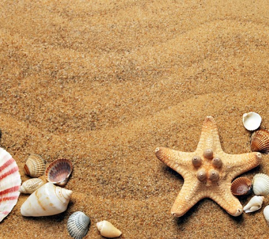 Merseyside Area | Weekend Coach Break to the South Coast of England, featuring optional day trips