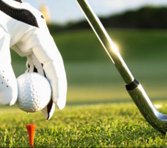 Southern Regional Golf Day