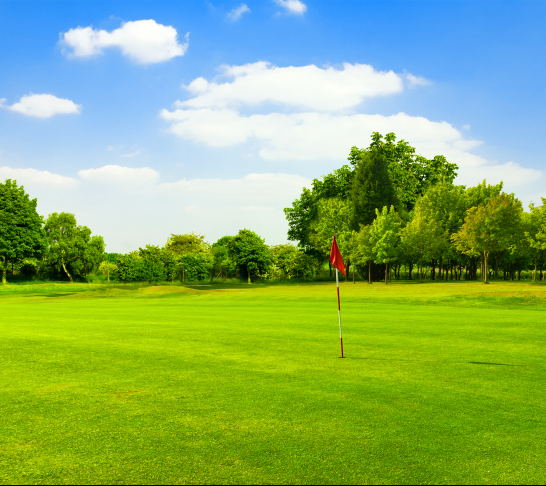 Hunts, Cambs and Beds Area | Introduction (or Returners) to Golf Lessons, Stagson, Nr Bedford