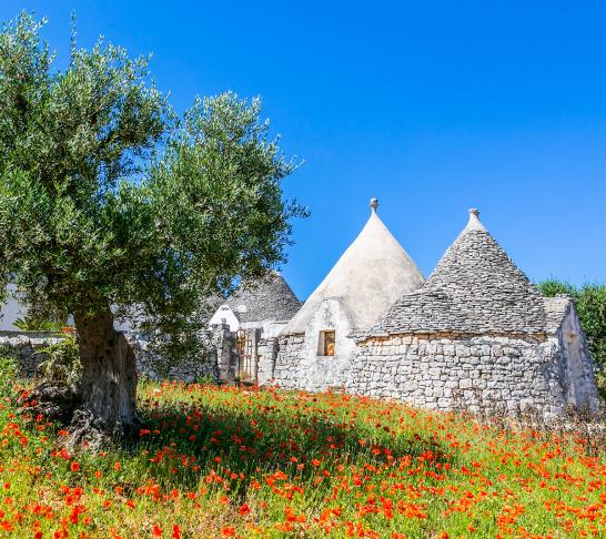 POSTPONED CSSC Eastern Region | Puglia, Italy Trip 2020