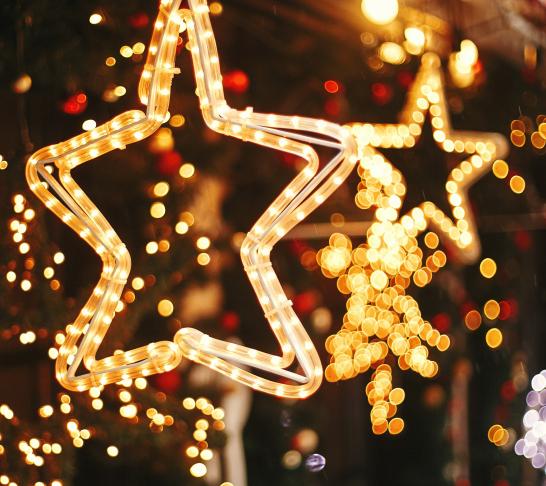 London | Christmas at Kew