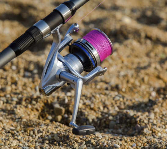 Eastern Region Shore Angling Championships (First leg)