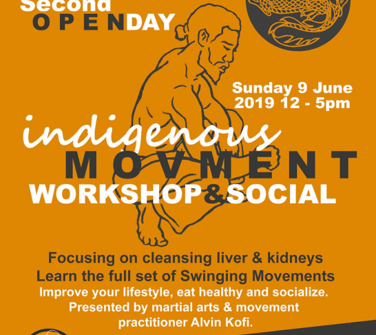 2nd Open Day - Indigenous Movement Workshop & Social Event