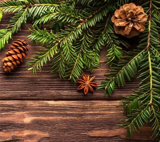 Suffolk & North Essex | Christmas craft workshop