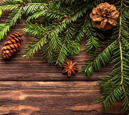 Telford & District | Christmas Wreath Making Evening