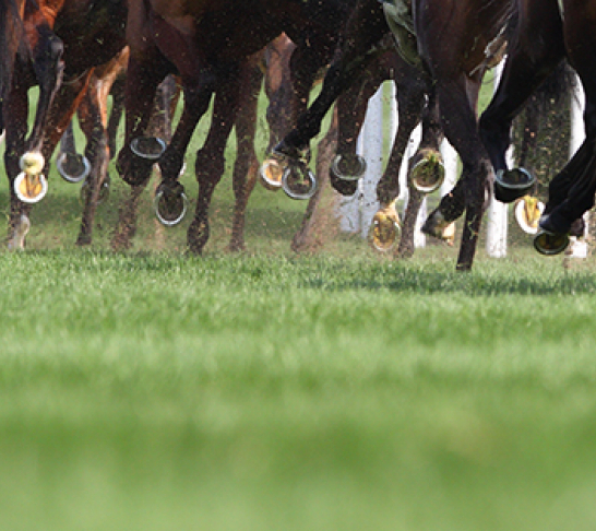 *Cancelled* Aintree Racing Trip