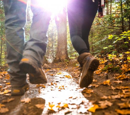 WR&C Area | Walking Group Circular Walk Mytholmroyd CC (12 Miles)