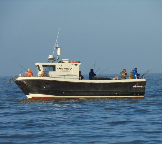 Southern Region | Boat Sea Angling Qualifier