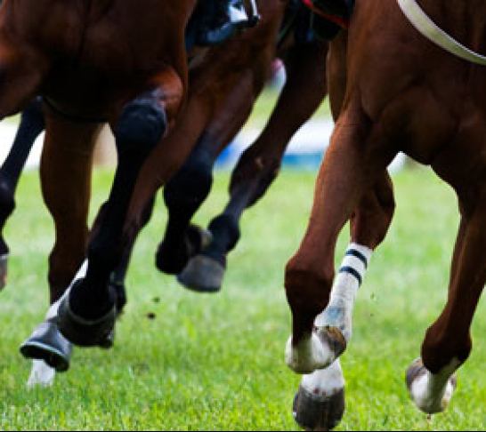 Chatham & Maidstone Area | Royal Ascot