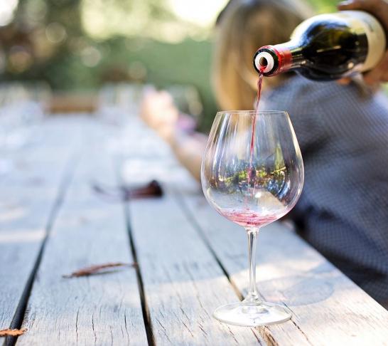 East Kent | Wine tasting and tour at Terlingham Vineyard (Hawkinge)